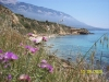 greece-kefalonia-agios-thomas-1